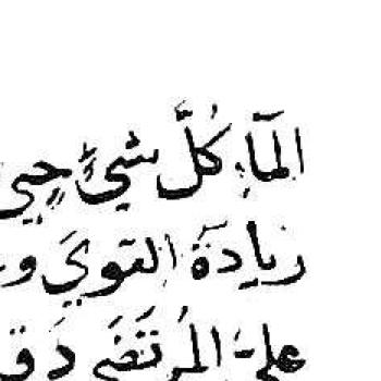 Arabe 6524 TRUE