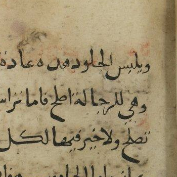 BnF Arabe 2825 31r f71.highres Kitab al-furusiyah TRUE